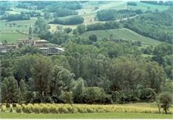 Consumo di suolo, via libera del Governo al ddl Catania