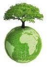 L'ambiente alleggerisce le pmi