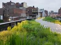 Tre metri quadrati in dieci anni: il verde urbano pro capite è in aumento