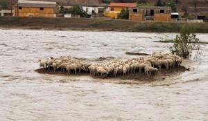 Sardegna, ciò che resta dopo l'alluvione