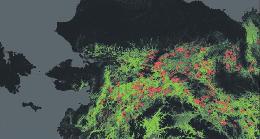 Deforestazione, Google vigila