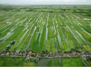 La politica agricola dell'Ue dovrebbe tener conto meglio delle risorse idriche