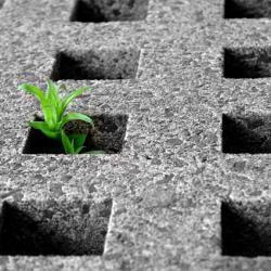 Da non crederci: per la legge italiana il suolo non è una risorsa ambientale