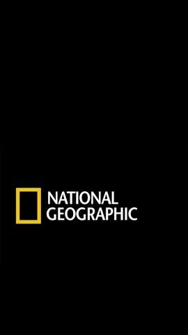National Geographic Young Explorer Grant: premi fino a 5 mila euro per progetti di ricerca