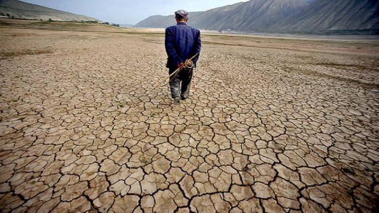 Allarme globale per il degrado del suolo