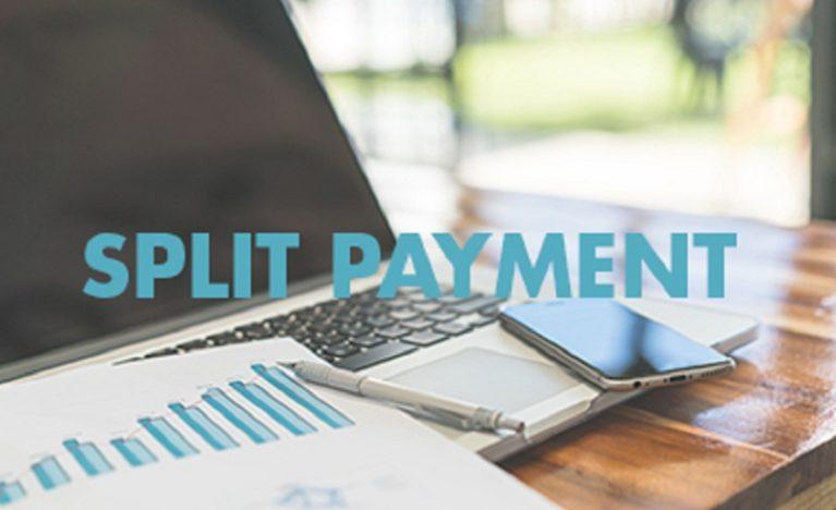 Professionisti e split payment: la ritenuta detta il perimetro