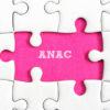 Commissari di gara e trasparenza: dov'è la delibera ANAC n. 648 del 18 luglio 2018?
