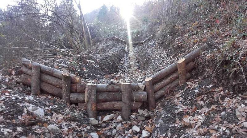 Difesa del suolo, dall'Ambiente 50 milioni per interventi su boschi e foreste