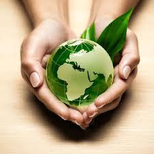 La Green Economy si mette in moto