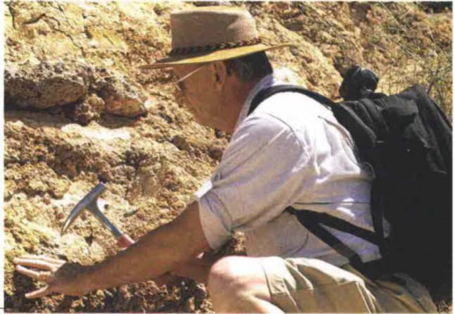 Geologi italiani. Sì da Federazione Ue a National Licensed Body
