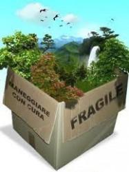 Corruzione e reati ambientali. Aziende all'appello della 231