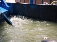 Pesticidi, oltre la metà delle acque superficiali contaminate