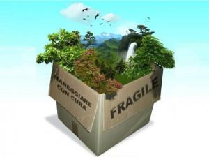 Il danno ambientale va sempre risarcito