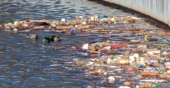 Fiumi e laghi italiani: il 40 per cento è inquinato
