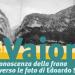 Mostra, documentari e conferenze. L'Università ricorda il Vajont
