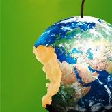 Stop al consumo del suolo, il Consiglio dei Ministri approva il disegno di legge