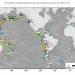 Predire i grandi terremoti