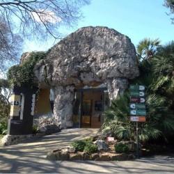 Il Museo del crimine ambientale inaugurato a Roma: è il primo in Europa