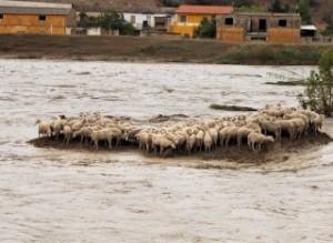 Sardegna: rischio idrogeologico nell'80% dei comuni