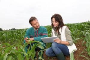 Competenze professionali: agli Agrotecnici la progettazione e direzione delle opere di trasformazione e miglioramento fondiario