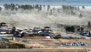 Disastri naturali, è l'ora della resilienza