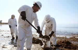 Marea nera in California, disastro peggiore di quanto si pensasse