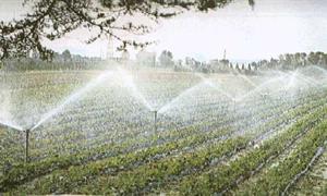 Regione a secco di idee sulla gestione dell'acqua