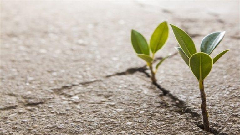 Consumo di suolo, Confindustria: necessarie modifiche al Ddl