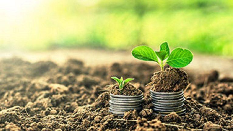 Fondo investimenti, all'Ambiente vanno 500 milioni: saranno usati per la difesa del suolo e i depuratori
