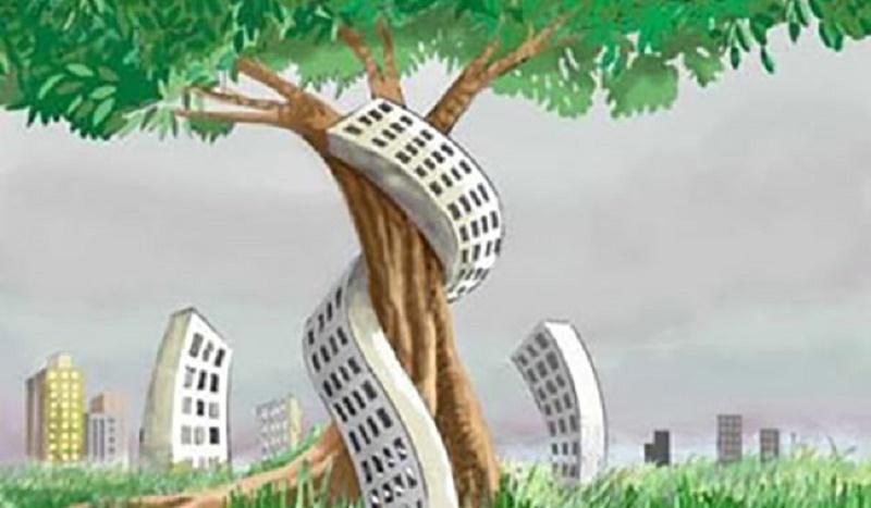 «Consumo di suolo, servono incentivi alla rigenerazione»