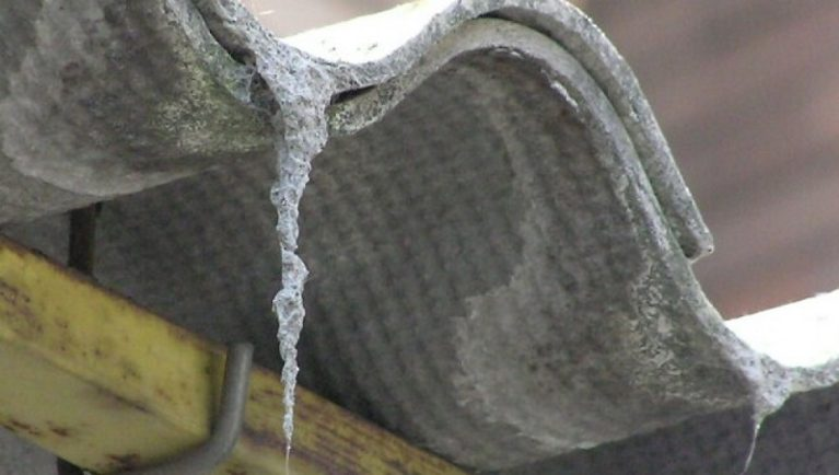 Amianto, fibra killer: ogni anno 6mila morti in Italia 96mila siti contaminati e pure 2.400 scuole a rischio