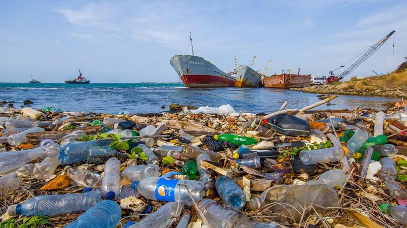 """""""Per salvare il mare servono più controlli e interventi strutturali"""""""