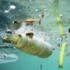 In fondo al mare più plastica che vita