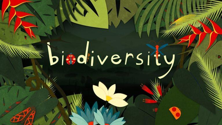 Perché sulla Terra c'è così tanta biodiversità? La risposta è sulle montagne